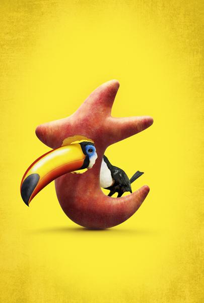 Oasis T : Pelican